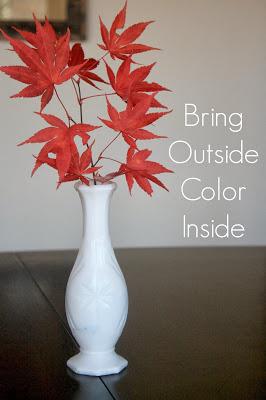 Bring Outside Color Inside 1