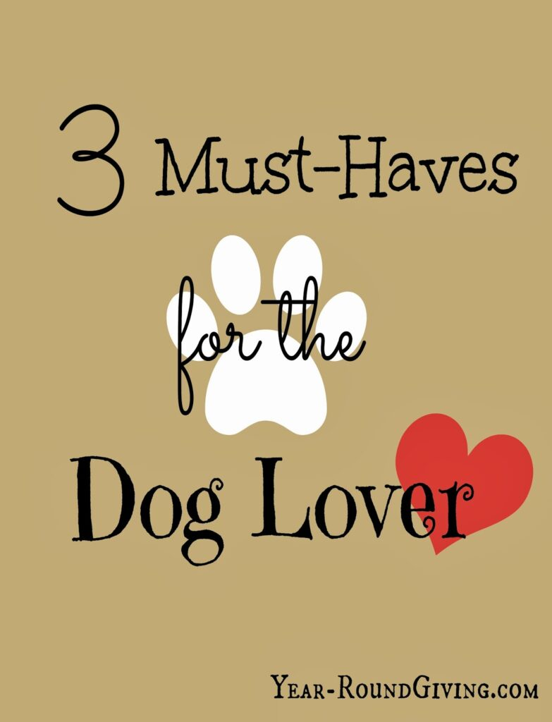 3 Must-Haves to spoil your dog
