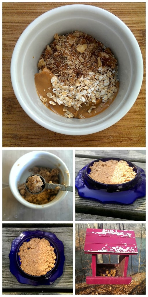 No Bake Cookie Recipe for Squirrels and Birds