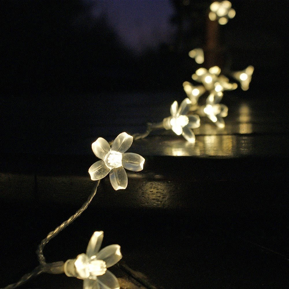 Decorative Lighting for your Garden 2