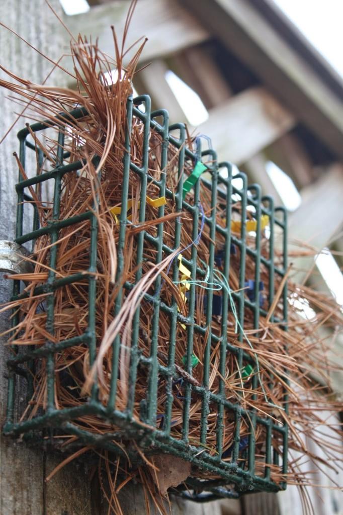 Nesting Material Station for Wild Birds