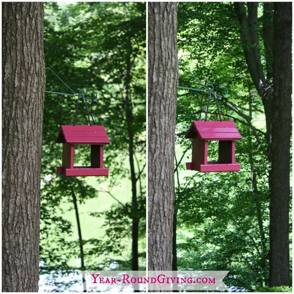 Easy Ideas to Brighten Up a Garden 2