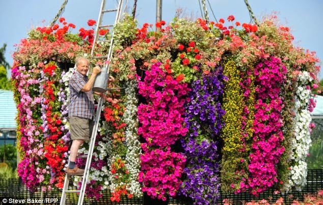 How To Make Flower Baskets For Hanging : Hanging flower basket inspiration daily appetite