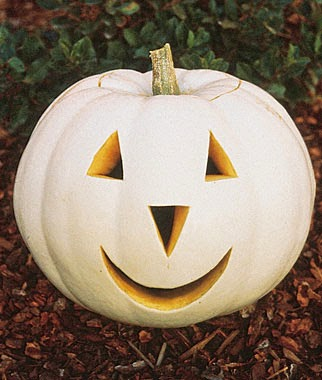 List of different types of pumpkins: White Pumpkin