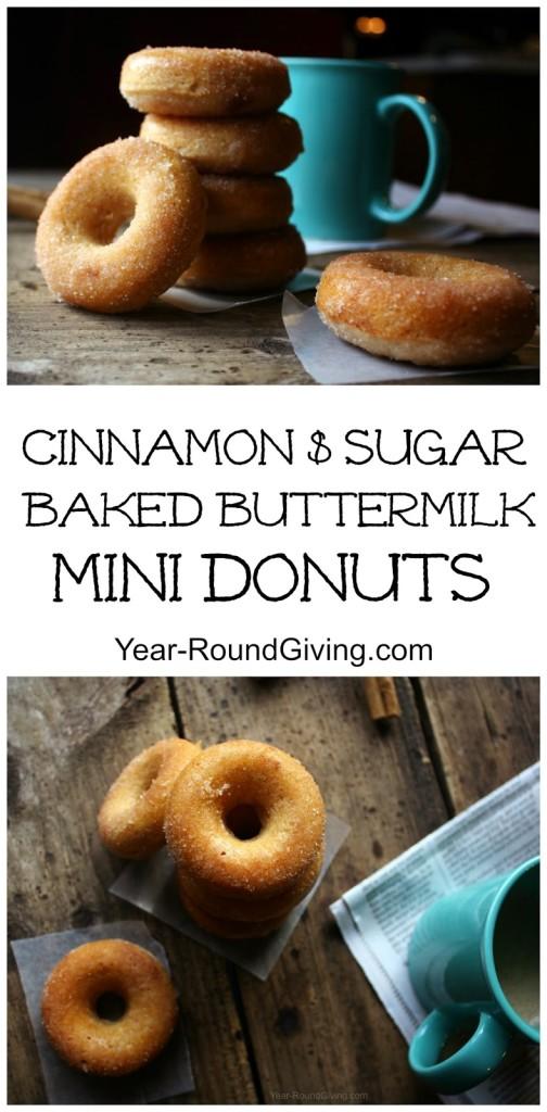Cinnamon & Sugar Baked Mini Donuts 2