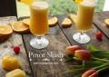 Pinot-Slush-4