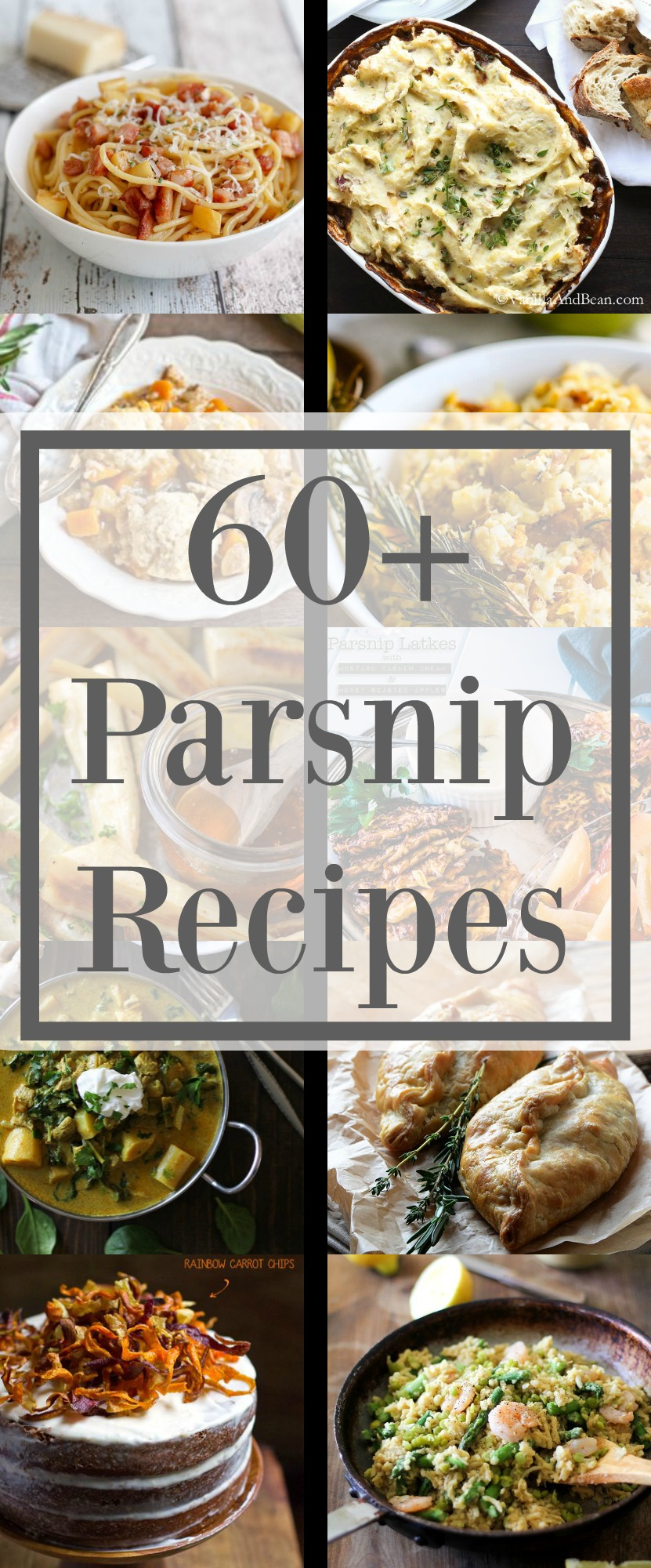 When Parsnips are in season you need only 1 list of recipes and it is this one! Here are 60+ of the Greatest Recipes for Parsnips around the web.