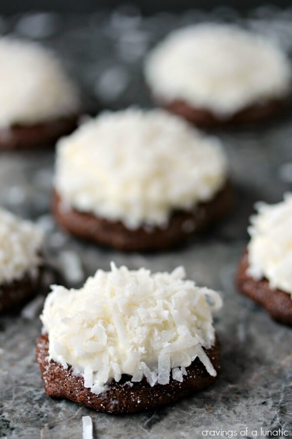 Chocolate Coconut Cookies plus 20 more Chocolate Cookie Recipes