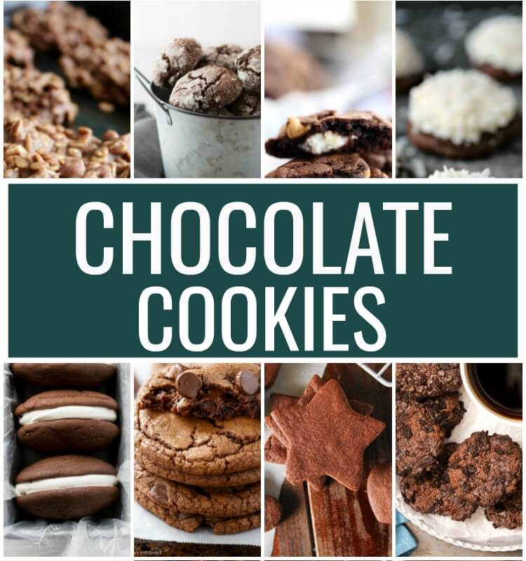 20 Chocolate Cookie Recipes