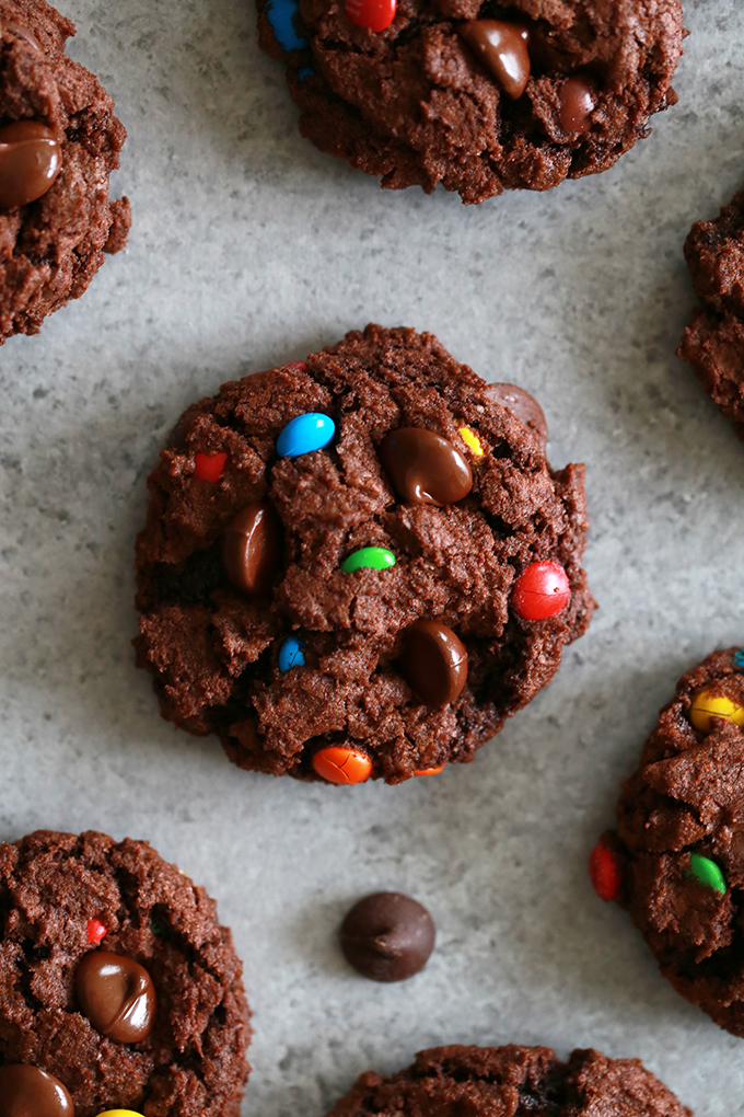 Double Chocolate M&M Cookies + 20 Chocolate Cookie Recipes