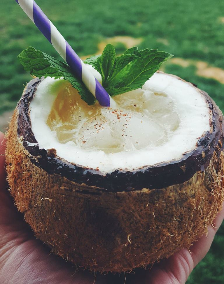 Tropical Coconut Rum Cocktail served in a coconut shell. Close your eyes and vacation anywhere while sipping this tropical rum cocktail.